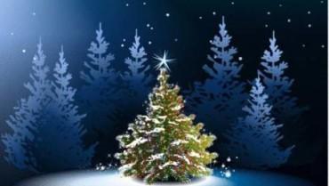 Vánoční slovo ředitelky CSSP